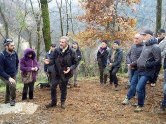 Canale ecologia cerca fondi per salvare i castagni