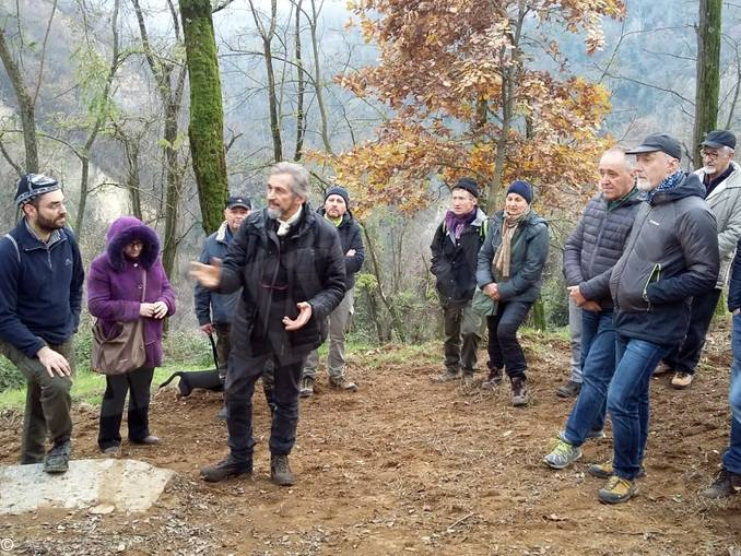 canale ecologia castagni