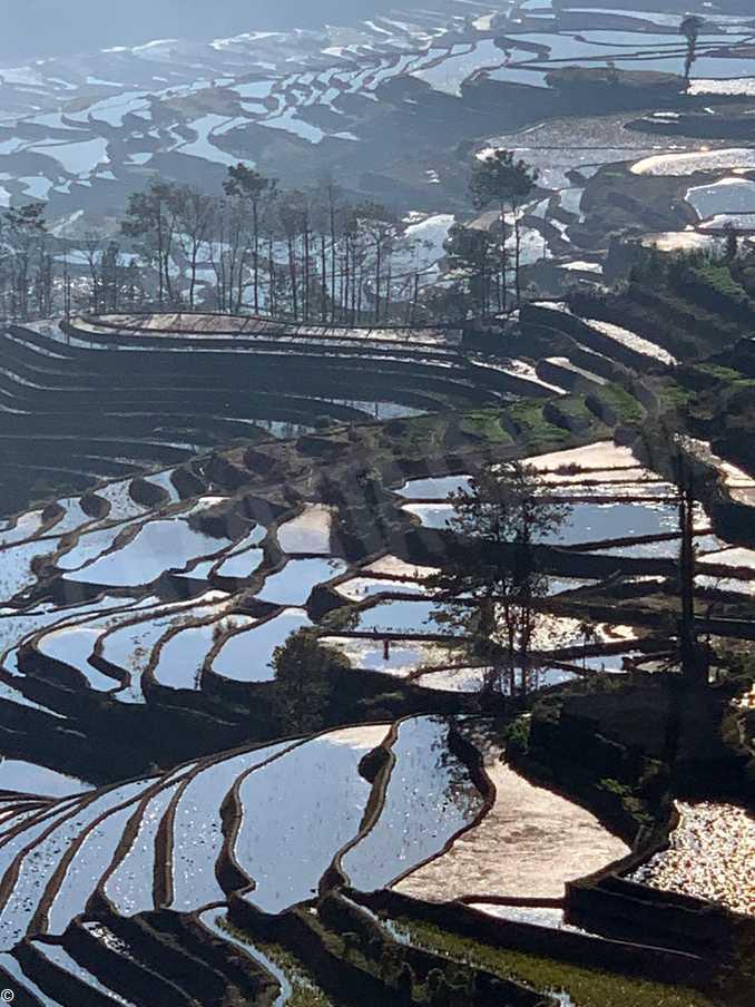 colline vino Unesco Cina 2019 (6)