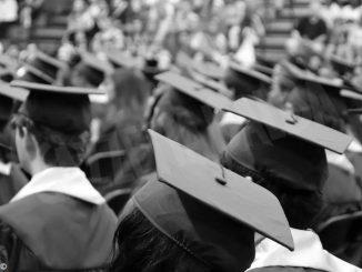 Più spazio ai laureati, molto meno a chi non ha ultimato gli studi