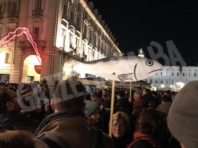 sardine Torino dicembre 2019 (1)