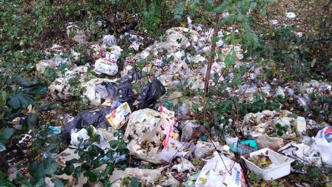 Gettava i rifiuti nella tenuta di Staffarda, multato per 600 euro