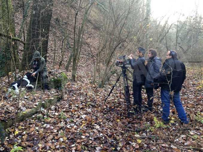 The truffle hunters2