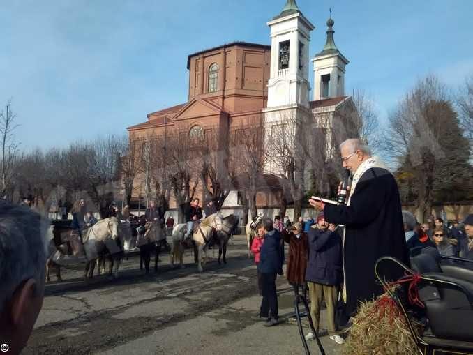 Torna la benedizione dei cavalli sul sagrato della Madonna dei fiori 1
