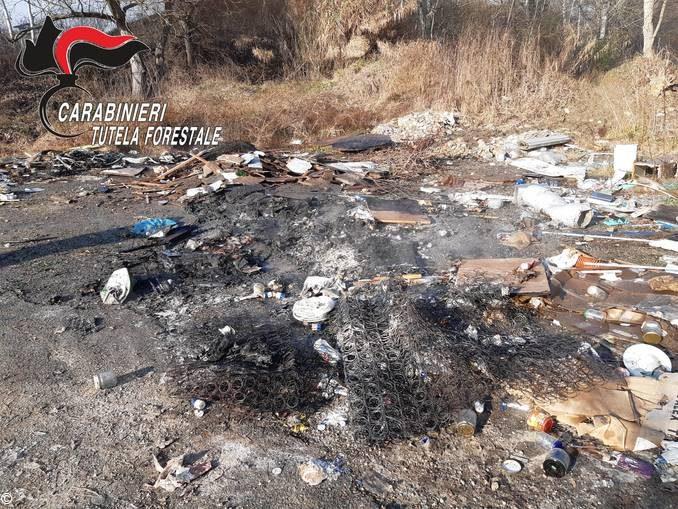 L'attività dei Carabinieri forestali: denunce per roghi di rifiuti e abbandono di animale 2
