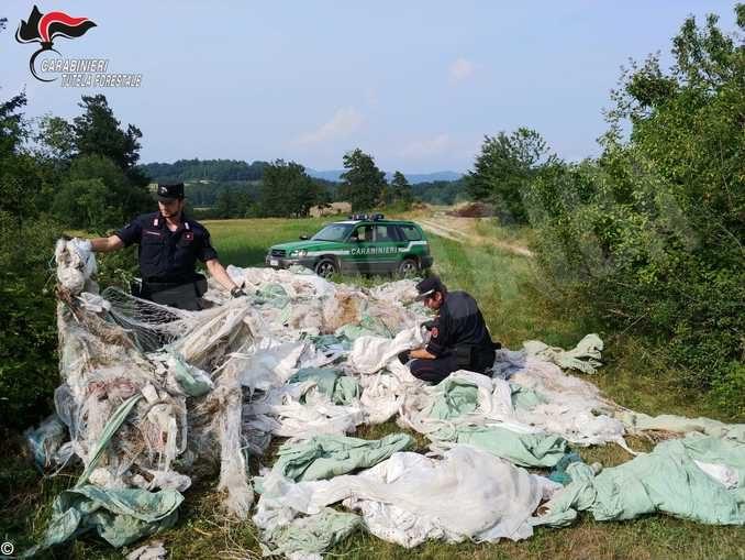 Nel 2019 i Carabinieri forestali hanno fatto sanzioni per quasi 3.5 milioni di euro 5