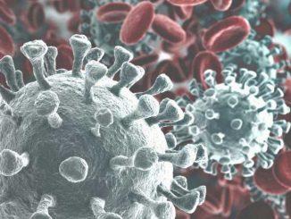 Coronavirus: le informazioni e i consigli dell'Asl Cn2 ai cittadini 1