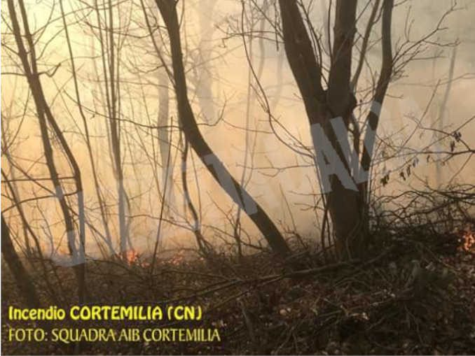 L'incendio al bosco di strada Viarascio a Cortemilia è sotto controllo