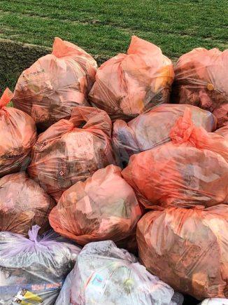 Domenica ecologica a Santa Vittoria: i volontari ripuliscono l'area dietro il centro commerciale 1