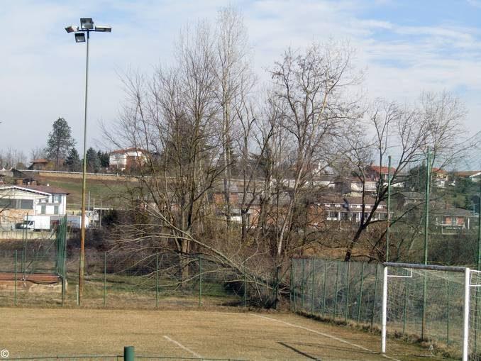Ceresole: il vento ha abbattuto due alberi vicino agli impianti sportivi 1