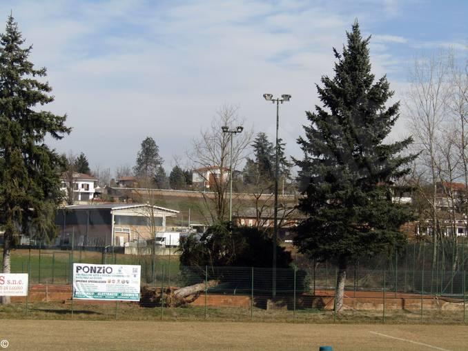 alberi abbattuti ceresole 2