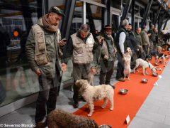 """Zuppa """"firmata"""" da Davide Palluda per ringraziare i cani da tartufo 4"""