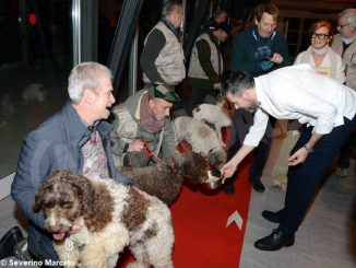 """Zuppa """"firmata"""" da Davide Palluda per ringraziare i cani da tartufo 5"""