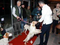 """Zuppa """"firmata"""" da Davide Palluda per ringraziare i cani da tartufo 6"""