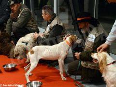 """Zuppa """"firmata"""" da Davide Palluda per ringraziare i cani da tartufo 8"""