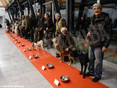 """Zuppa """"firmata"""" da Davide Palluda per ringraziare i cani da tartufo 9"""