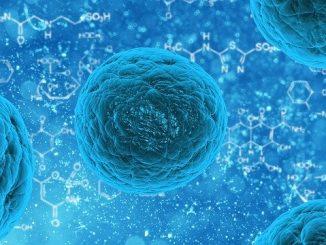 """Coronavirus, i ricercatori italiani hanno isolato il virus: """"Ora sarà più facile trattarlo"""""""