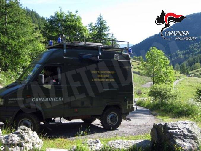 Carabinieri forestali unita mobile