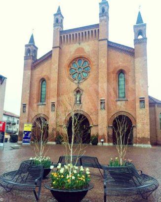 Ad Alba stanno fiorendo i tulipani donati dal castello di Pralormo a gennaio