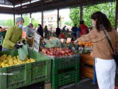 Mercati rionali: Alba è ripartita da piazza Cagnasso, domani piazza San Paolo e Moretta 6