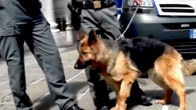 Non si ferma a controlli anti-Covid, arrestato con droga