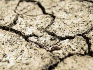 Siccità: è la primavera più secca degli ultimi 60 anni