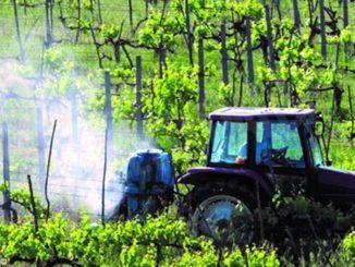 Chiavassa: l'agricoltura non può nuocere alla vita