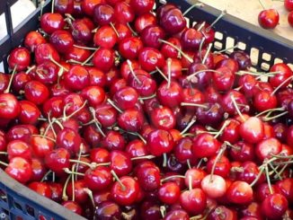 Dogliani: annullata l'edizione 2020 dell'Antica fiera della ciliegia