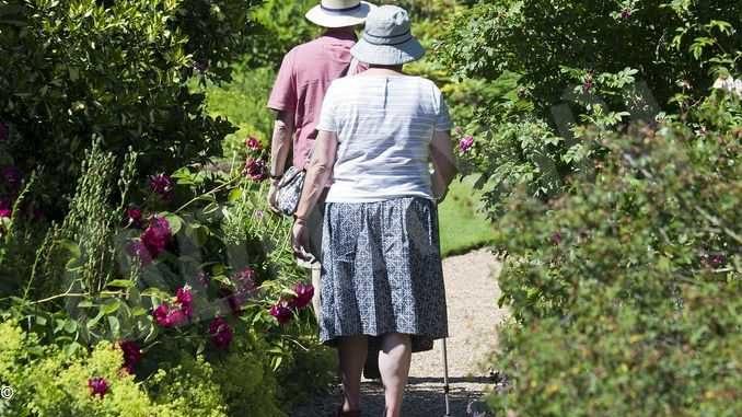 Argento attivo si sposta online per promuovere stili di vita sani tra gli over 60