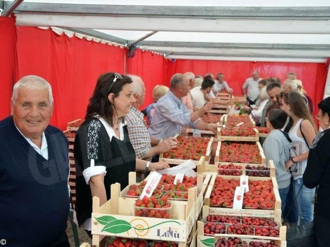 Domenica 31, a Sommariva Perno, il mercato dedicato alla fragola