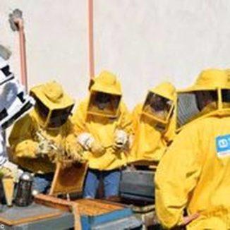Ruote, api e formazione: l'integrazione che punta al benessere 2