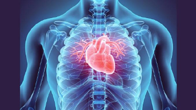 Coronavirus: studio indaga se danni permanenti al cuore
