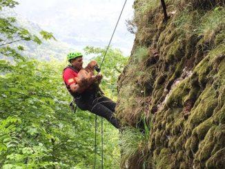 Salvati tre cani dal Soccorso alpino e speleologico piemontese sulle montagne di Quincinetto