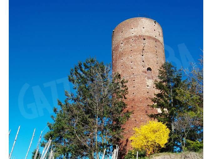 torre montaldo