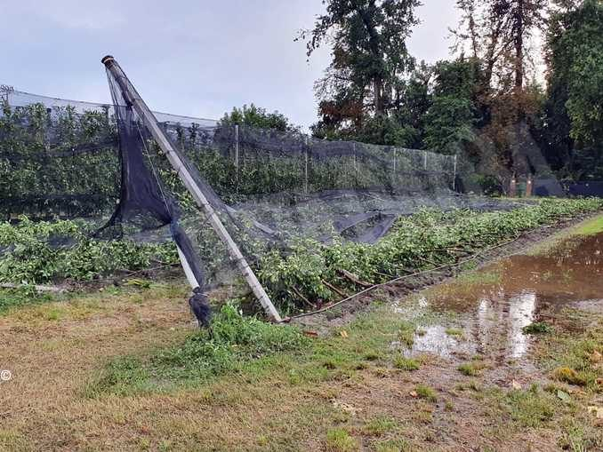 Tromba d'aria sul Cuneese: ingenti danni a frutta e cereali