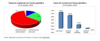 Nati-mortalità delle imprese in provincia di Cuneo 1
