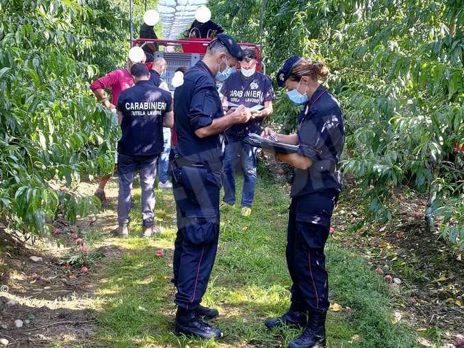 controlli carabinieri agricoltura