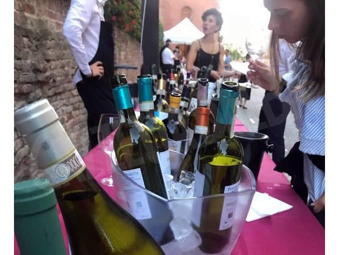 go wine magliano1