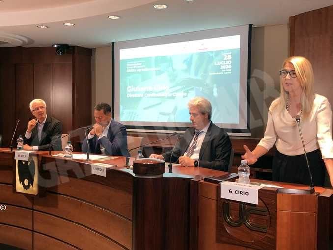 Università: nasce a Cuneo il primo corso di laurea italiano in diritto agroalimentare 1