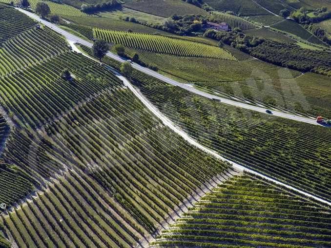 La rivista Weinwirtschaft premia Terre del Barolo come miglior cooperativa italiana 2020