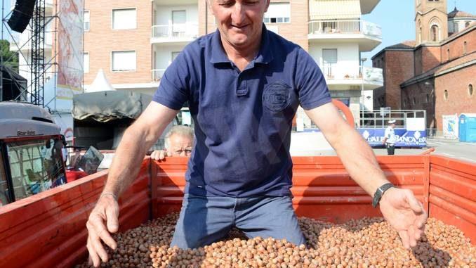 Lunedì 31, a Castagnole Lanze, appuntamento con la Fiera della nocciola e i primi prezzi dell'annata