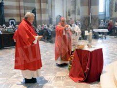 Il vescovo Marco: cosa significa servire in tempi di disoccupazione e pandemia 5