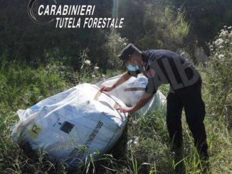 Abbandonano 880 lastre di amianto nelle campagne: i Forestali denunciano tre imprenditori 1