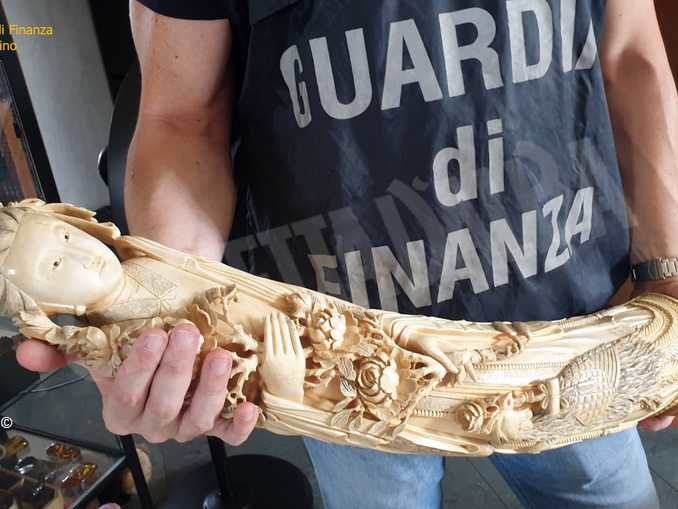 Vendevano oggetti d'avorio e corallo, coppia denunciata dalla Finanza di Torino