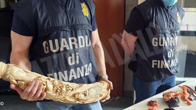Vendevano oggetti d'avorio e corallo, coppia denunciata dalla Finanza di Torino 1