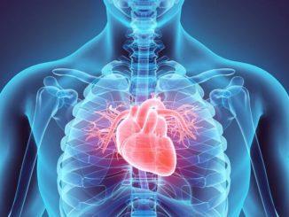 """In """"era Covid"""" una piazza telematica stabile per il confronto sulla cardiologia"""