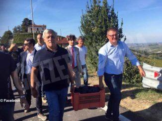 Mario Sandri pensa a un modo per offrire ai turisti l'esperienza della vendemmia