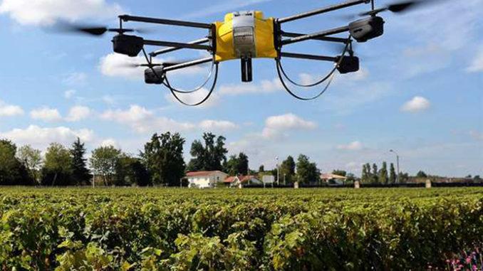 Coldiretti: firmato l'accordo per la digitalizzazione agricola