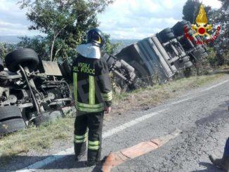 Camion carico di maiali esce di strada, lunghe code tra Barolo e Novello