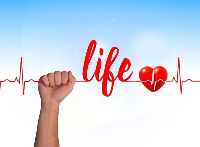 cuore-battito-vita